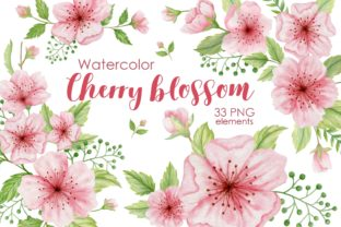 Print on Demand: Watercolor Cherry Blossoms Clipart. Graphic Illustrations By Kira Art Story