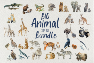 Print on Demand: Big Animal Clip Art Bundle Graphic Illustrations By tatibordiu