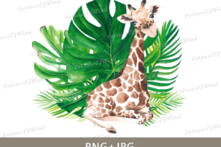 Print on Demand: Watercolor Cute Giraffe Sublimation PNG Graphic Illustrations By colours_of_wind