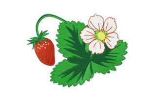 Print on Demand: Strawberry Berry, Leaf, Flower Summer Embroidery Design By EmbArt