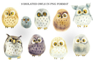 Watercolor Funny Owls Graphic Illustrations By Мария Кутузова 2