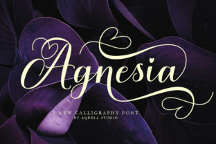 Print on Demand: Agnesia Script & Handwritten Font By Aqeela Studio