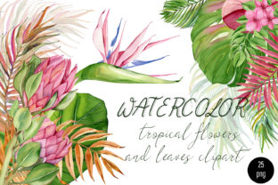 Print on Demand: Watercolor Flower Tropical Clipart Graphic Illustrations By ElenaZlataArt