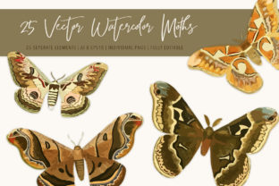 Print on Demand: 25 Vector Watercolor Moths Graphic Illustrations By Jennadesigns