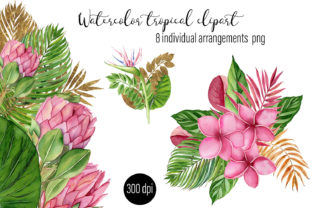 Print on Demand: Watercolor Tropical Compositions Graphic Illustrations By ElenaZlataArt