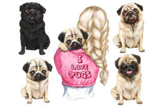 Cute Pug Watercolor Clipart. Pug Lovers Graphic Add-ons By EvArtPrint