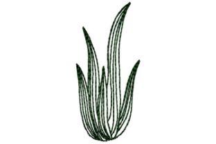 Cactus Outline Outline Flowers Embroidery Design By designsbymira