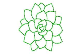 Delicate Succulent Outline Outline Flowers Embroidery Design By designsbymira