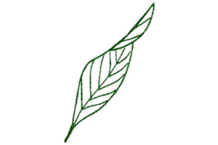 Fern Leaf Outline Outline Flowers Embroidery Design By designsbymira