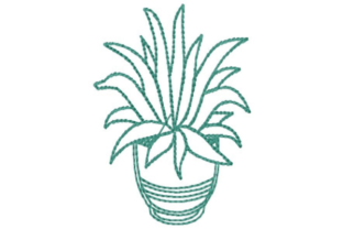 Potted Succulent Outline Outline Flowers Embroidery Design By designsbymira