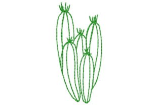 Southwestern Cactus Outline Outline Flowers Embroidery Design By designsbymira
