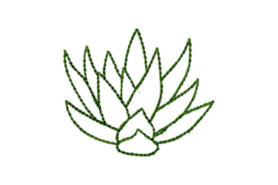 Succulent Leaves Outline Outline Flowers Embroidery Design By designsbymira