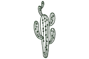 Tall Cactus Outline Outline Flowers Embroidery Design By designsbymira