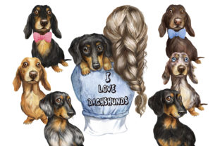 Dachshunds Dogs Watercolor Clipart. Pets Graphic Add-ons By EvArtPrint