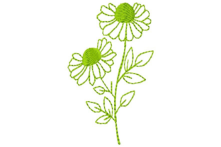 Coneflower Outline Outline Flowers Embroidery Design By designsbymira