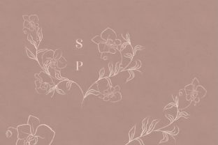 Print on Demand: White Line Drawing Delicate Orchid. Graphic Illustrations By Olya.Creative