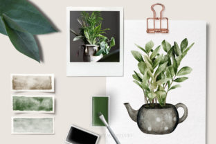 House Plants Illustrations and Patterns - 2