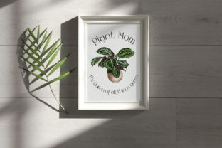 House Plants Illustrations and Patterns - 3