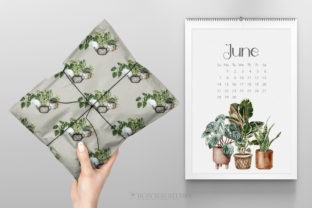 House Plants Illustrations and Patterns - 4