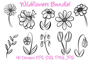 Print on Demand: Wildflower Illustration Collection Graphic Illustrations By squeebcreative