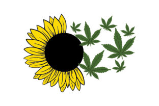 Sunflower and Cannabis Leaves Nature & Outdoors Craft Cut File By Creative Fabrica Crafts