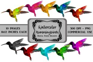 Print on Demand: Colorful Watercolor Hummingbird Clipart Graphic Illustrations By digitalpaperdelights