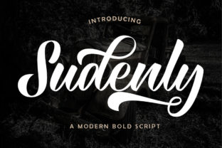 Print on Demand: Sudenly Script & Handwritten Font By Septa Script