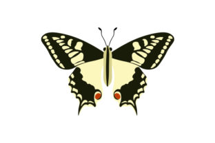 Swallowtail Butterfly Animals Craft Cut File By Creative Fabrica Crafts