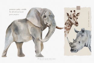 Wild Animals of Africa Illustrations PNG - 3