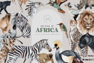 Wild Animals of Africa Illustrations PNG Graphic Illustrations By Busy May Studio
