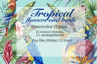 Print on Demand: Tropical Birds and Tropical Plants. Graphic Illustrations By Marine Universe