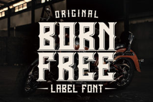 Print on Demand: Born Free Display Font By Vozzy Vintage Fonts And Graphics