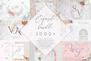 Print on Demand: Exquisite Bundle. Graphic Elements. Logo Graphic Illustrations By Olya.Creative