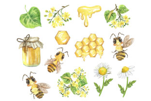 Bee Clipart. Summer, Honey, Flowers Graphic Add-ons By EvArtPrint 2