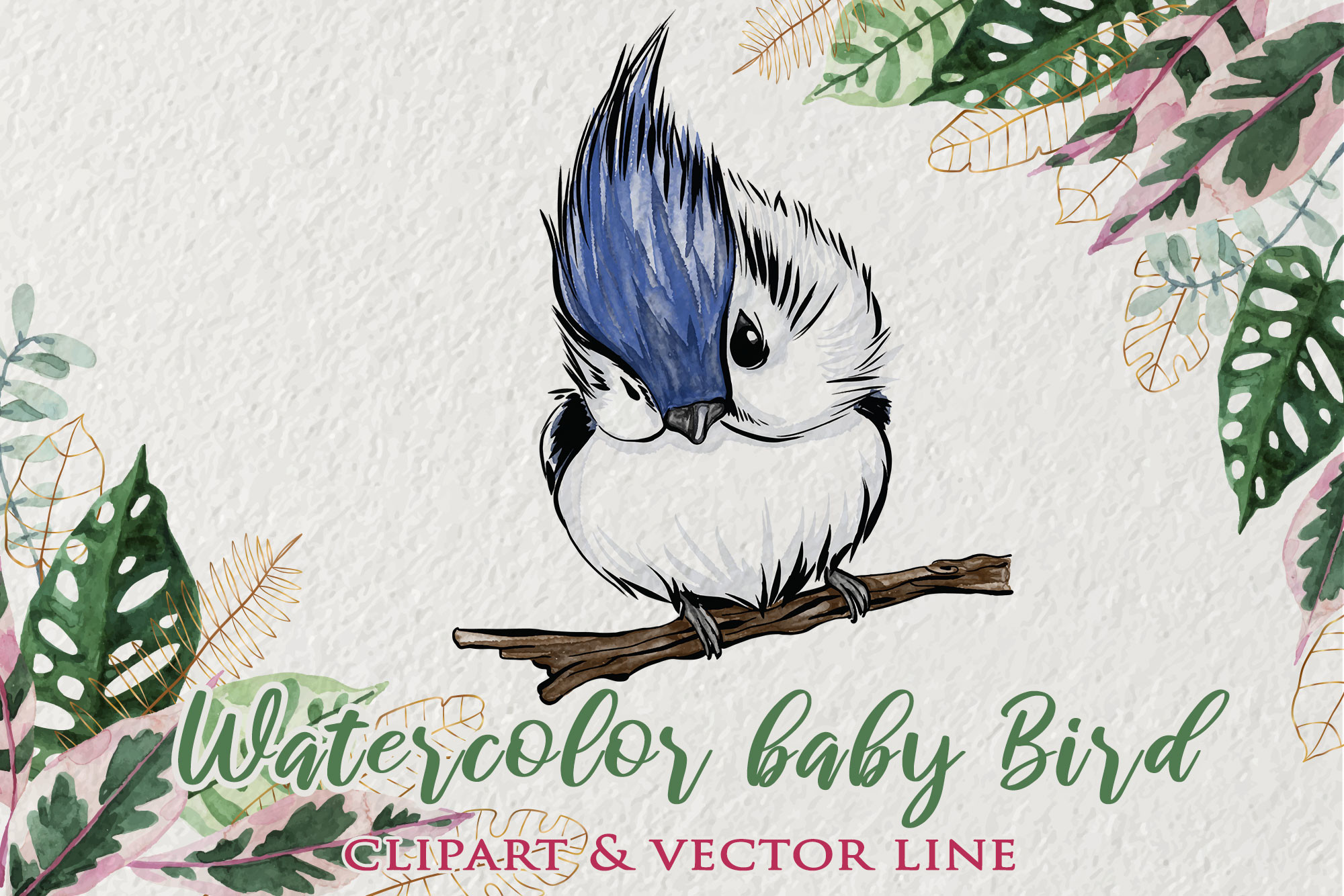 Watercolor Baby Bird Clipart SVG File