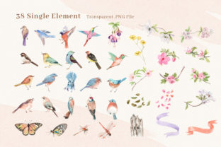 Spring Birds of Spring Watercolor Graphic Illustrations By WatercolorEps 11