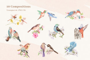 Spring Birds of Spring Watercolor Graphic Illustrations By WatercolorEps 2