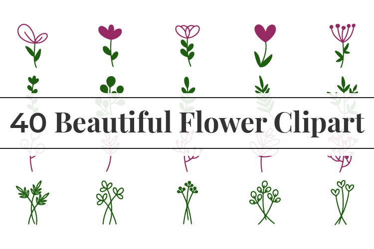 40 Beautiful Flower Clipart SVG File