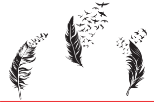Print on Demand: Feather Graphic Illustrations By Sofiamastery 1