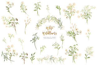 Print on Demand: White Wildflowers Watercolor Clipart Graphic Illustrations By SunflowerLove