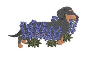 Dachshund Walking Through Bluebonnets Dogs Embroidery Design By Embroidery Designs