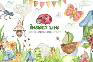 Insect Life Watercolor Collection Graphic Objects By Marina Ermakova