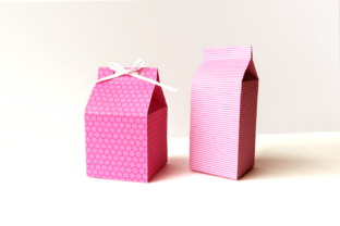 Milk Carton Boxes SVG Graphic 3D Shapes By RisaRocksIt