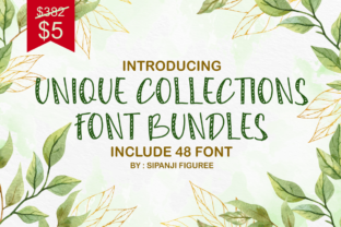 Print on Demand: Unique Collections Display Font Bundle By sipanji figuree