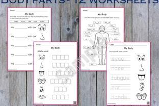 12 - My Body Parts Worksheets Graphic K By WorksheetsWithFun