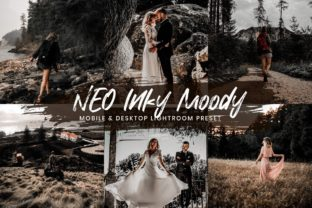 Print on Demand: 15 Lightroom Presets Neo Inky Moody Graphic Actions & Presets By 3Motional