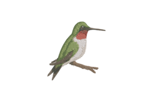 Hummingbird Birds Embroidery Design By Wingsical Whims Designs