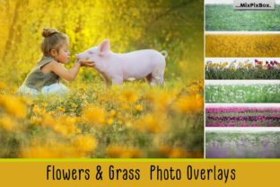 Print on Demand: Flowers and Grass Overlays Graphic Layer Styles By MixPixBox