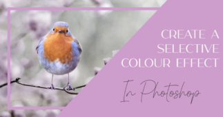 Add a Splash of Colour in Photoshop