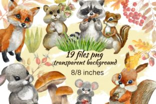 Print on Demand: Forest Animals Baby Watercolor Clipart. Graphic Illustrations By Marine Universe 2